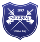 Negrini shield